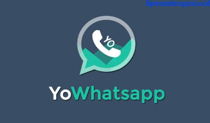 Yo WhatsApp